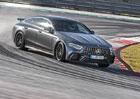 Mercedes-AMG GT 4dveřové kupé a první jízdní dojmy: Texaský masakr na okruhu formule 1!