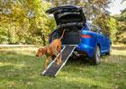 Jaguar představuje novinky, které udělají radost především psům