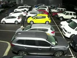 Video: Dva kluci dokázali za chvíli zničit 37 aut u prodejce Toyot. Škoda jde do milionů