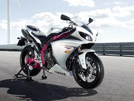 Yamaha YZF-R1 2009: první info + 2x VIDEO!: titulní fotka