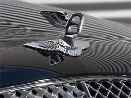 Arden vytvořil pro Bentley ... logo: titulní fotka