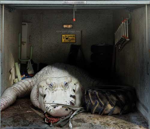 Konec nudným garážím!: - fotka 13