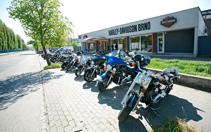 Za řídítky Harley-Davidson: Electra Glide, Road King a V-Rod: - fotka 1