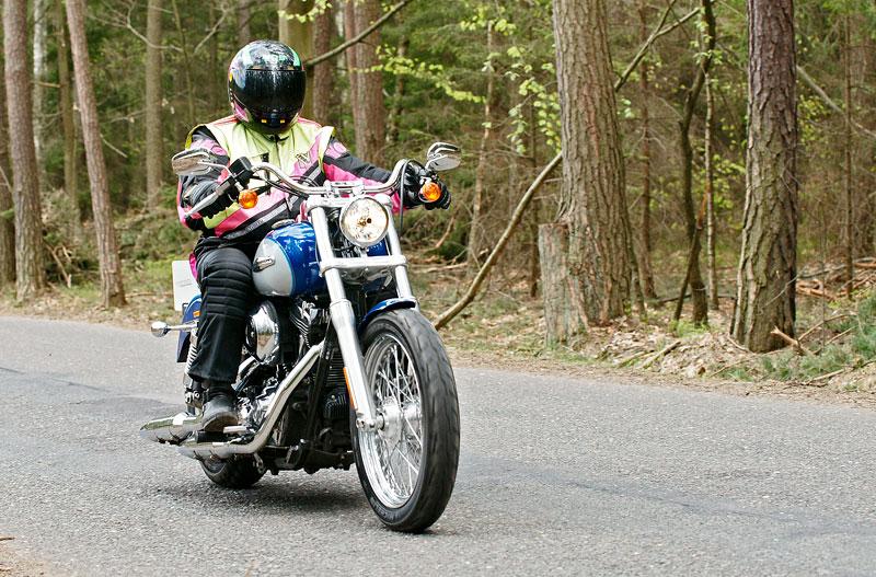 Za řídítky Harley-Davidson: Electra Glide, Road King a V-Rod: - fotka 34