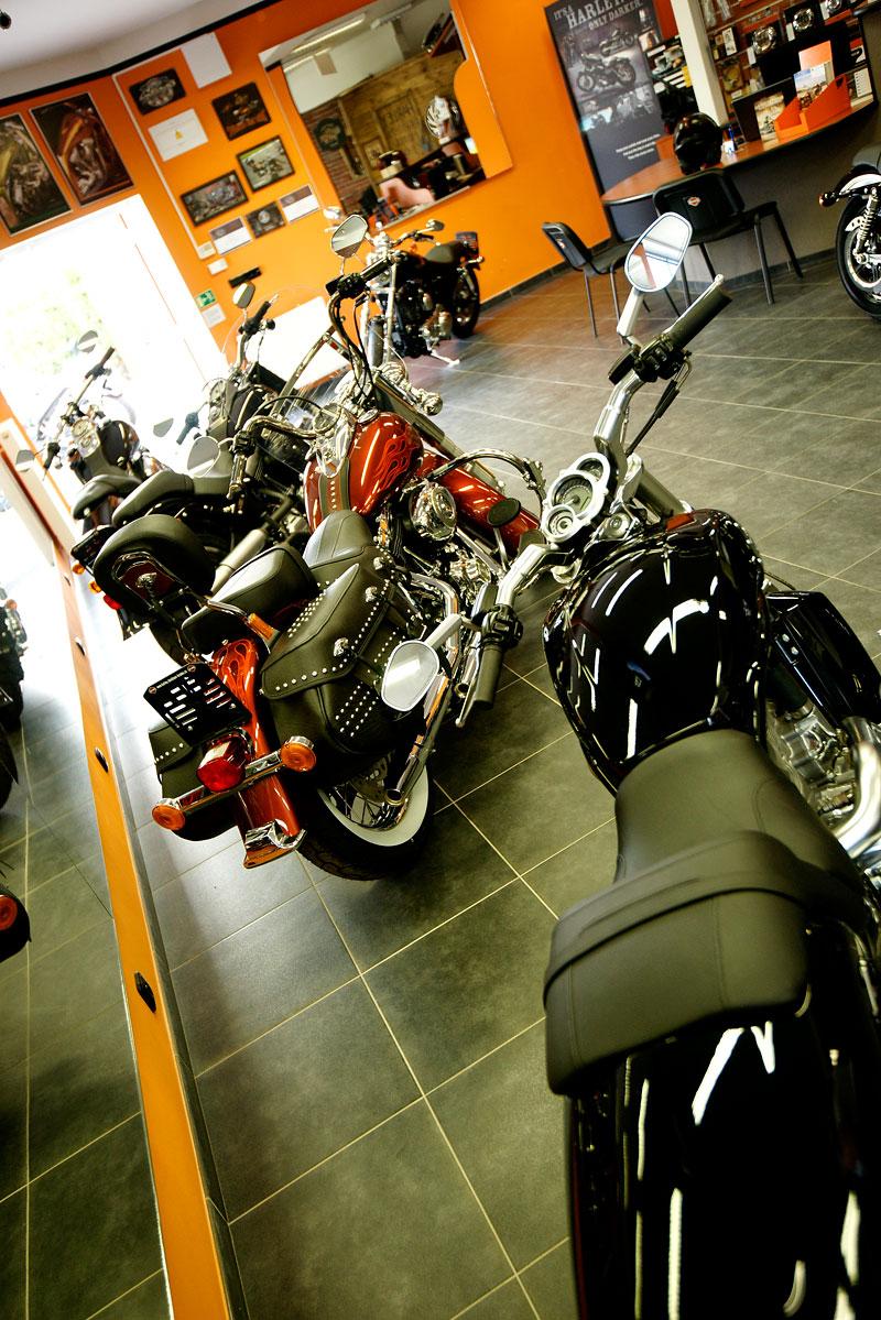 Za řídítky Harley-Davidson: Electra Glide, Road King a V-Rod: - fotka 45