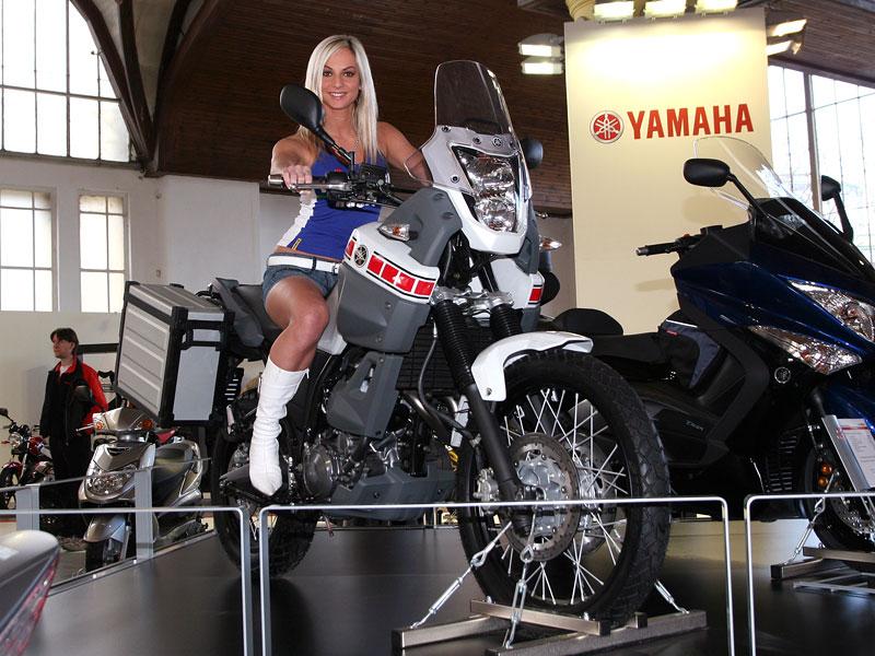 Motocykl 2008: informace a živé foto: - fotka 2