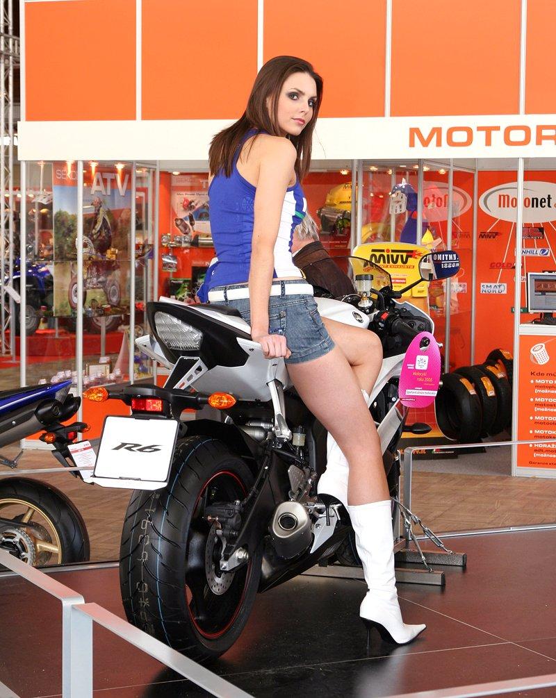 Motocykl 2008: informace a živé foto: - fotka 45
