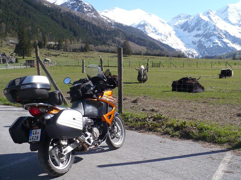 Dueltest - Honda XL1000V Varadero vs. Moto Guzzi Stelvio 1200: - fotka 45