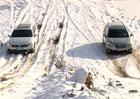 Video: Subaru Outback vs. VW Passat Alltrack v Hummer centru. Terénní sprint!